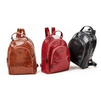 Τσάντα πλάτης Verde 16-0005313