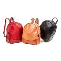 Τσάντα πλάτης Verde 16-0005400