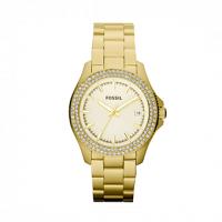 FOSSIL Traveler Crystals Gold Stainless Steel Bracelet AM4453